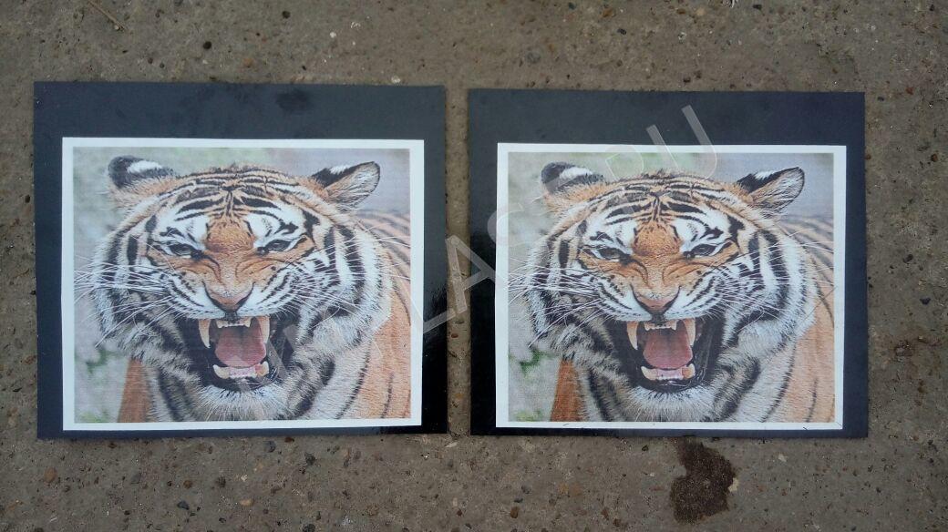 Брызговик задних колес Тигр